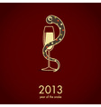 2013 new year card vector image