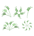 A set of philodendron leaves on white background vector | Price: 1 Credit (USD $1)