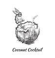 coconut cocktail drink hand drawn vector image vector image