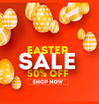 easter sale special holiday offer creative vector image vector image