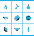 food icons colored set with coco barberry vector image vector image
