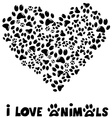 I love animals card vector image vector image