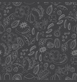 pattern with hand drawn spices and herbs vector image
