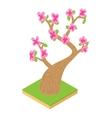 Sakura icon cartoon style vector image vector image