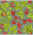 wild rose pattern vector image vector image