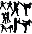 karate girl silhouette vector image