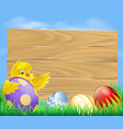 easter chicken and chocolate painted eggs vector image