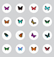 set of butterfly realistic symbols with demophoon vector image