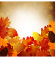 Autumn leaves with light of blurred vector image vector image