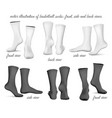 basketball socks front side vector image vector image