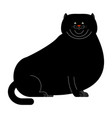 fat black cat isolated big thick pet home vector image