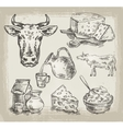 Hand drawn sketch set of dairy products and cow
