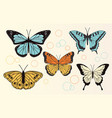 set of realistic butterflies vector image