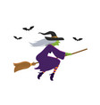 witch flying on broomstick vector image