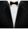 Tuxedo with bow tie vector image