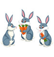 a rabbit on white background vector image