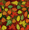Autumn leafs seamless pattern vector image vector image