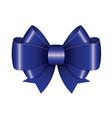 blue ribbon bow vector image