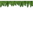 fir-tree branch border vector image
