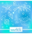 set nautical doodles with turtlesand crab vector image