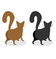 Cat Back Pet escapes Funny animal with bushy tail vector image vector image