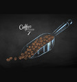 chalk sketch of coffee scoop with beans vector image