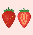 cute strawberry isolated on white background vector image vector image