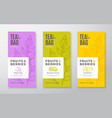 exotic fruits tea labels set packaging vector image