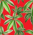 foliage seamless pattern 15 vector image vector image
