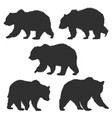 set wild grizzly bear silhouettes isolated vector image
