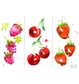 watercolor berry set vector image vector image