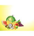 fruits horizontal background vector image