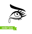 Eye icon 15 vector image vector image