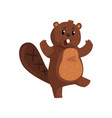 surprised beaver with happy muzzle cartoon rodent vector image vector image