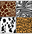 wallpaper patterns vector image vector image