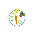 White plate with vegetables icon vector image vector image