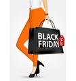 woman holding shopping bag vector image vector image