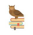 wise owl sitting on the stack of books Education vector image