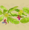 babana pattern vector image vector image
