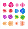 Flower petals overlapping colorful vector image