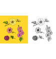 flowers set daffodil and orchid with leaves vector image