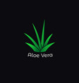 green aloe vera plant icon vector image