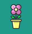 indoor plant flower in pot planting and vector image