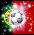 portugal soccer flag vector image vector image