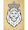 the head a lion with a crown vector image vector image