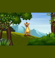 a hyena looking for prey on hill vector image vector image