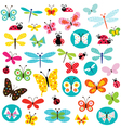 butterflies and ladybugs vector image vector image