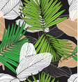 foliage seamless pattern7 vector image