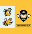 modern professional set emblems bee in vector image
