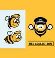 modern professional set emblems bee vector image